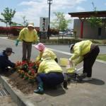 5月ボランティアの日