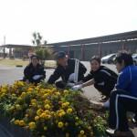 ボランティアの会花壇整備・花植え活動